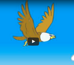 Flying_Eagle_Animation