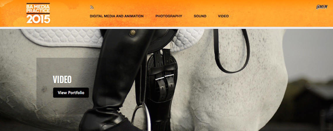 Website Created for Sussex University